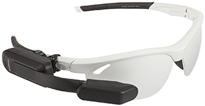 Garmin Varia Vision In-sight Display: US$399.99.