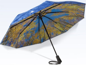 Airbus Umbrella: €24.90.