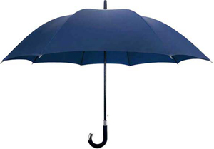 Allen Edmonds Elite Cane Umbrella by Davek: US$149.