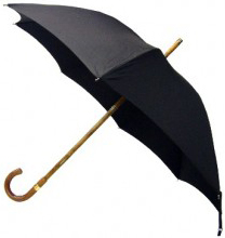 The Brigg Umbrella.