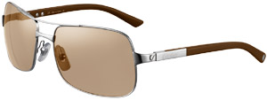 Santos de Cartier rimmed sunglasses: US$910.