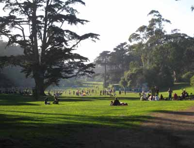Golden Gate Park, 501 Stanyan St, San Francisco, CA 94117, U.S.A.