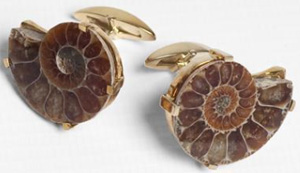 Hilditch & Key Cufflinks. Gold Plated Fossil Cufflinks: £50.
