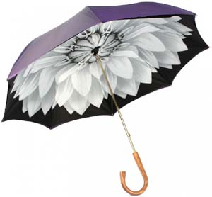 Illesteva Women's Umbrella 4: US$250.