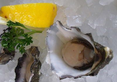 Oysters served on ice and with a piece of lemon on the side.