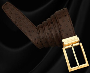 Stefano Ricci Ostrich Belt with Brass Buckle in Gold Finish: €1,600.