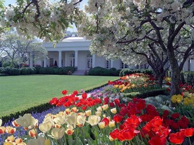 White House Rose Garden, White House, 1600 Pennsylvania Avenue NW, Washington, D.C. 20500, U.S.A.