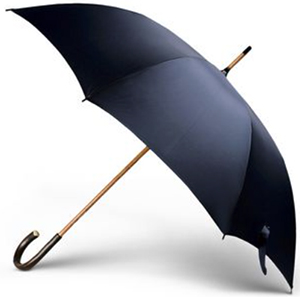 Ermenigildo Zegna men's Blue Umbrella: US$225.