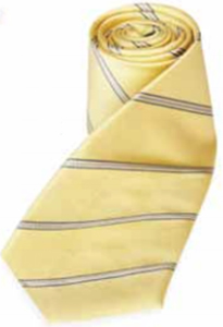 Lotus House Stripe Tie.