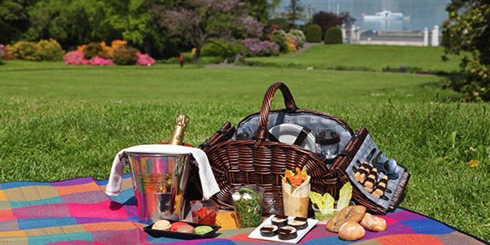 Picnic gourmet hamper packed with the very best foods and champagne at Lac Leman, Geneva, Switzerland.