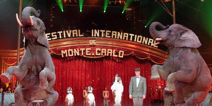 Festival du Cirque.