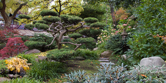 Japanese garden in Tivoli, Vesterbrogade 3, DK-1630 Copenhagen K, Denmark.