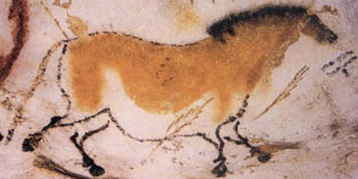 Cave painting of a dun horse (equine) at Lascaux.
