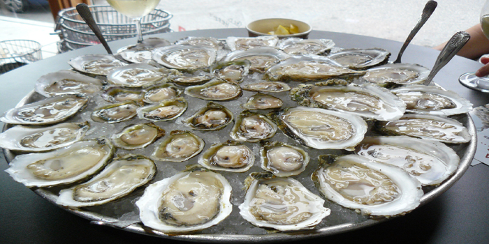 Plate of oysters.