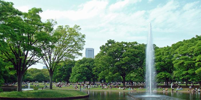 Yoyogi Park, Shibuya-ku, Tokyo, Japan.