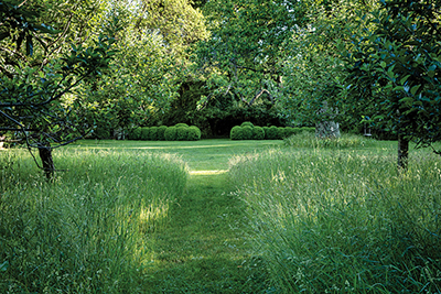 Anna Wintour's Wild Garden (Photo: Ricardo Labougle).