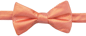 Countess Mara Solid Stripe Pre-Tied Bow Tie: US$22.50.
