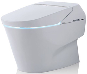Neorest® 750H Dual Flush Toilet: US$10,200.