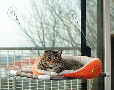 Kitty Cot: US$44.95.