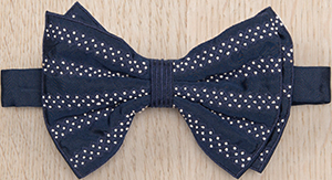 Jupe by Jackie Farragut Horizontal 100% silk bow tie: €130.